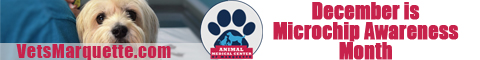 Microchip Your Pet at Animal Medical Center